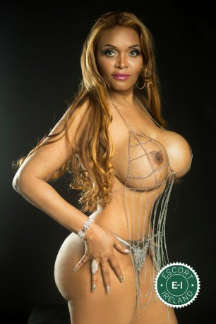 Meet the beautiful Victoria in Dublin 7  with just one phone call