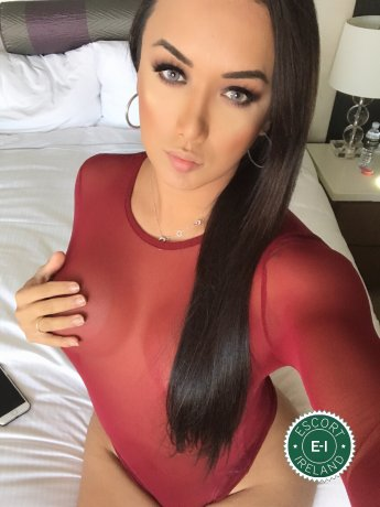 Meet the beautiful V.I.P TS Bianka Nascimento  in Dublin 3  with just one phone call