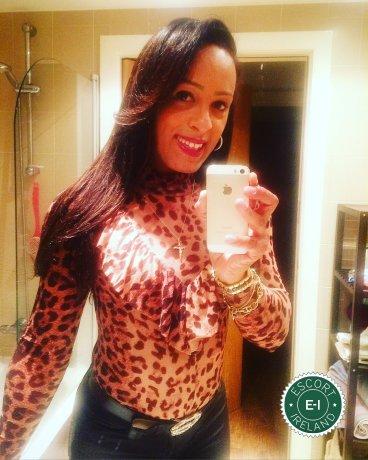 Bia Hernández TS is a sexy Brazilian escort in Dublin 8, Dublin