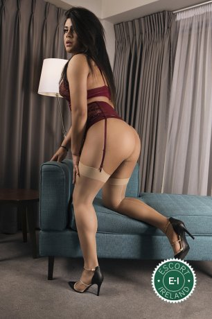 TV Diamond  is a hot and horny Brazilian Escort from Limerick City