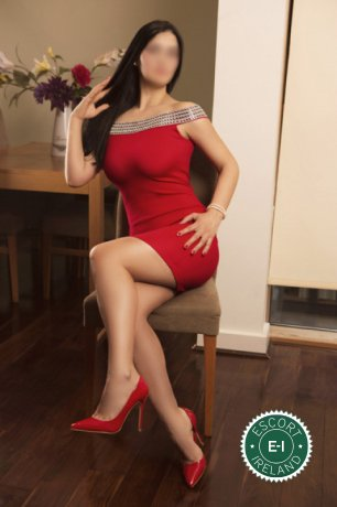 Brianna is a sexy Czech escort in Dublin 18, Dublin