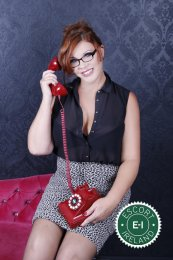 Meet the beautiful American Pie in Dublin 9  with just one phone call