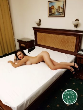 Meet the beautiful Ella in Dublin 6  with just one phone call