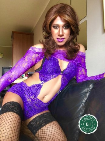 Meet the beautiful TV Luna in Kilkenny City  with just one phone call
