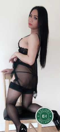 Spend some time with TS Thai Jenny in Dublin 4; you won't regret it
