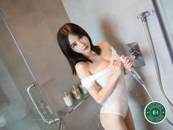 Selina is a sexy Chinese Escort in Limerick City