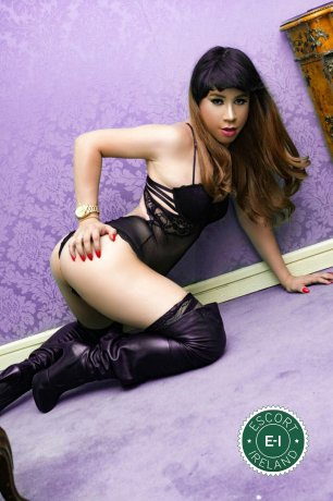 Meet the beautiful TV Nicol  in Cork City  with just one phone call