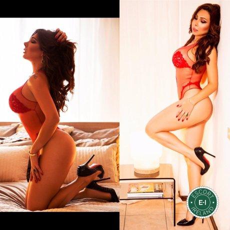 TS Pamela Nayara is a very popular Venezuelan escort in Dublin 24, Dublin