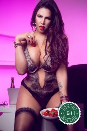 Meet the beautiful TS Natalie Jane in Dublin 4  with just one phone call