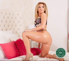 Meet the beautiful Daria in Limerick City  with just one phone call