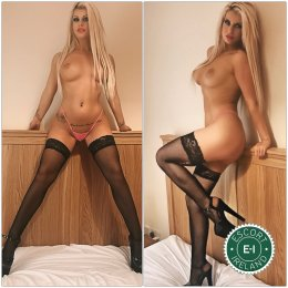 Spend some time with Angelis in Dublin 1; you won't regret it