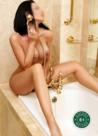 Book a meeting with Daria in Dublin 2 today