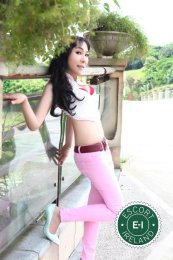 Meet the beautiful Japan Suiki in Tralee  with just one phone call