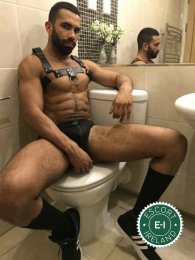Meet the beautiful Rick Fralem in Dublin 8  with just one phone call