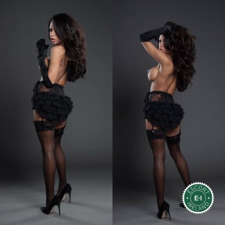 Meet the beautiful TS Sara  in Dublin 9  with just one phone call