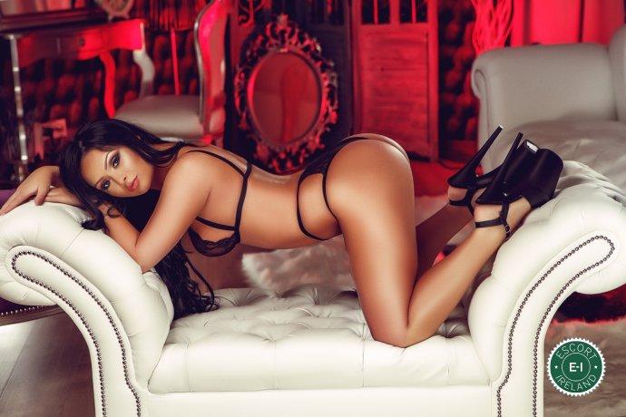 Nikole is a hot and horny Dominican escort from Dublin 4, Dublin