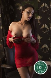 Book a meeting with Jessika in Dublin 18 today
