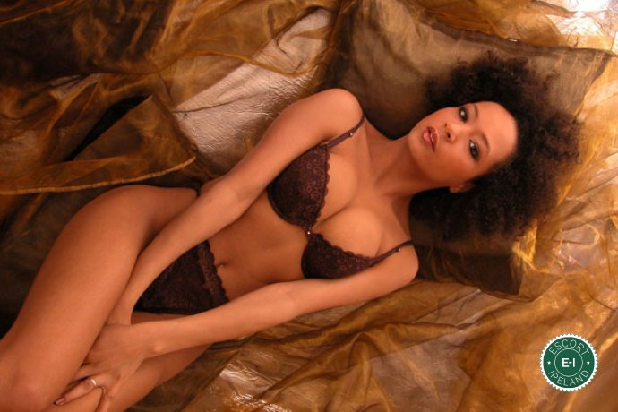 The massage providers in Dundalk are superb, and Sensual Professional Masseuse  is near the top of that list. Be a devil and meet them today.
