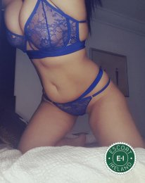 Book a meeting with Curvy Nina in Dublin 1 today