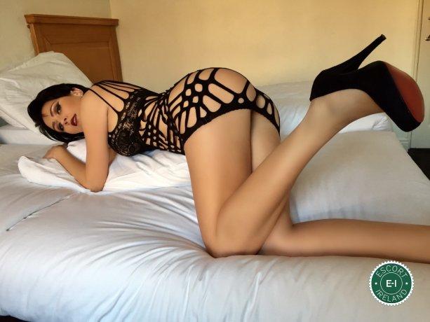 Nikky is a sexy Hungarian escort in Dublin 1, Dublin