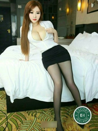 Book a meeting with Fang Fang in Limerick City today