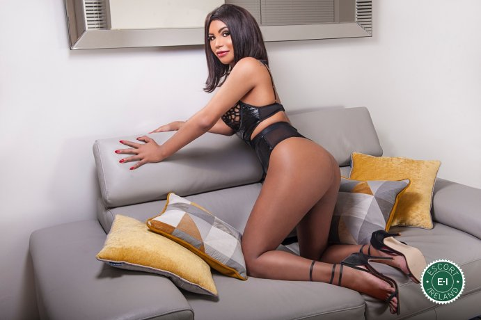 TS Nicole Noguera is a hot and horny Spanish Escort from Dublin 8