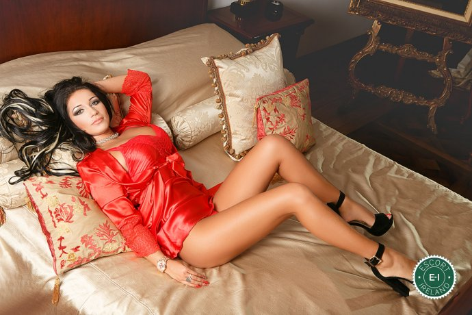 Meet the beautiful Anelys in Dublin 7  with just one phone call