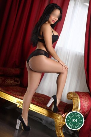 Laila is a very popular Venezuelan Escort in Waterford City