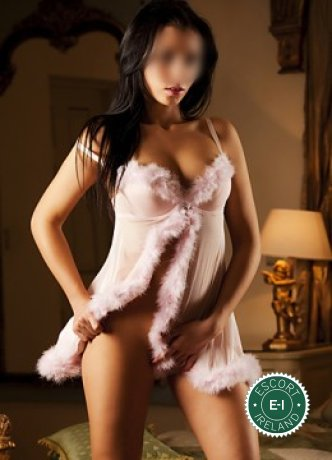 Angel is a sexy English escort in Maynooth, Kildare