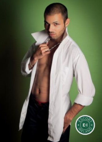 Roger is a hot and horny Italian escort from Tullamore, Offaly