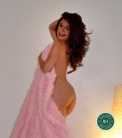 Tuyla TV is a high class Brazilian escort Tramore, Waterford