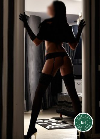 The massage providers in Dublin 4 are superb, and Ashling Massage is near the top of that list. Be a devil and meet them today.