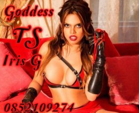Book a meeting with TS Iris Gomez  in Dublin City Centre South today