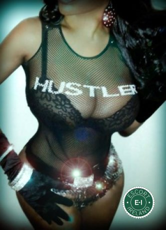TS Miss Mambo is a hot and horny Dutch Escort from Belfast City Centre